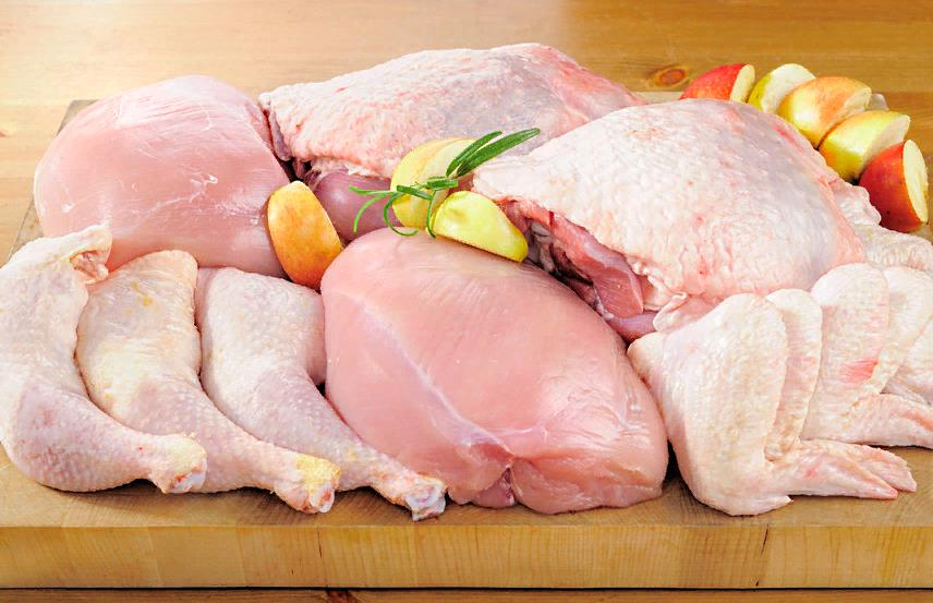 Мясо и птица в рационе бородача