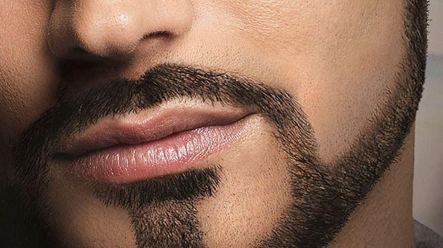 Вид бороды Якоря