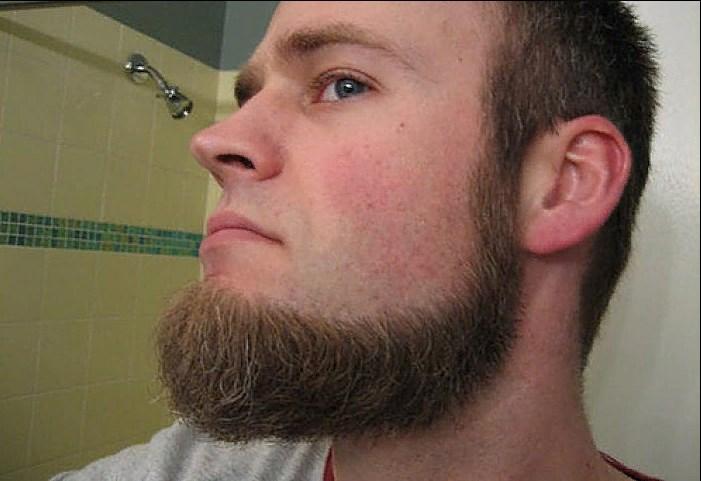 Шкиперская борода без усов