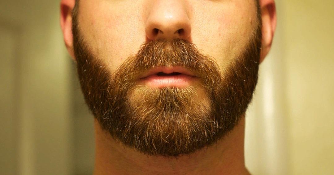 Что способствует росту бороды